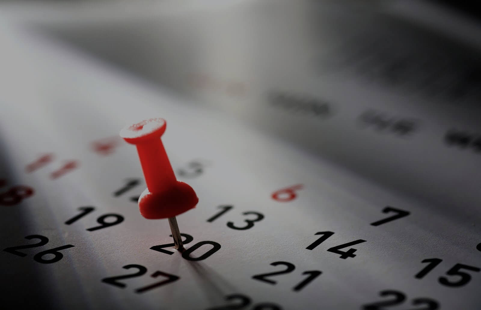 Calendario Pastore Tedesco 2020.Calendario Teatro La Fenice